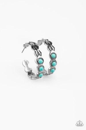 Earrings526