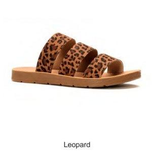 Corkys Dafne in Leopard