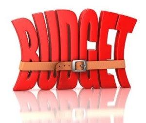 Babe Budget Bag