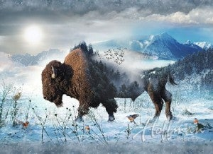"""43"""" x 32"""" Fabric Panel, Call of the Wild, Bison"""