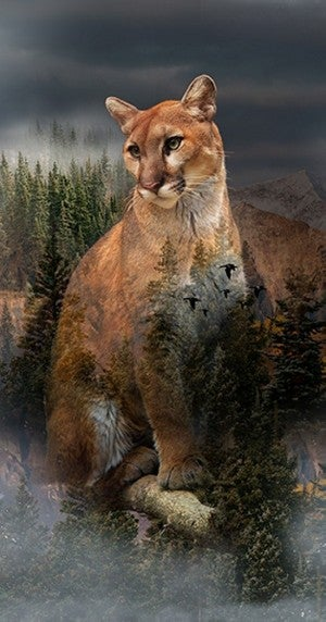"""43"""" x 24"""" Fabric Panel, Call of the Wild, Cougar"""