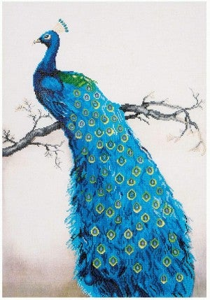 Diamond Dots, Blue Peacock