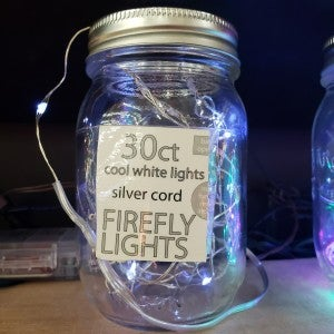 Cool 30 ct Firefly Lights,silver cord with remote