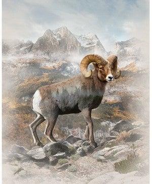 "42"" x 33"" Fabric Panel, Call of the Wild, Big Horn Sheep"