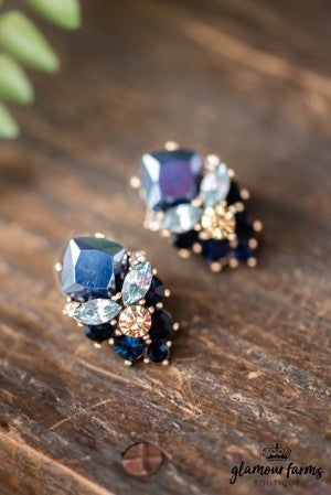 **Daily Deal** Chantel Rhinestone Earring