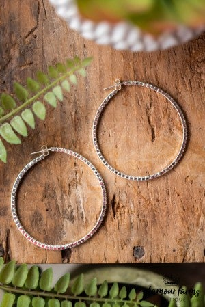 **Daily Deal** Simple Treasures Hoop Earring