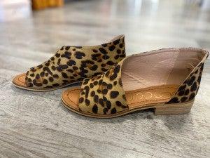 The Adele in Leopard Flat Shoe