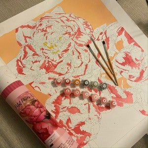Petal Power Pink Picasso Paint by Numbers