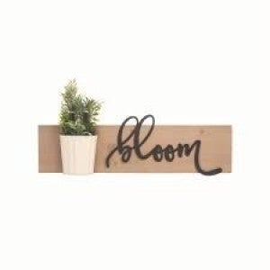 Bloom Wall art with Pot