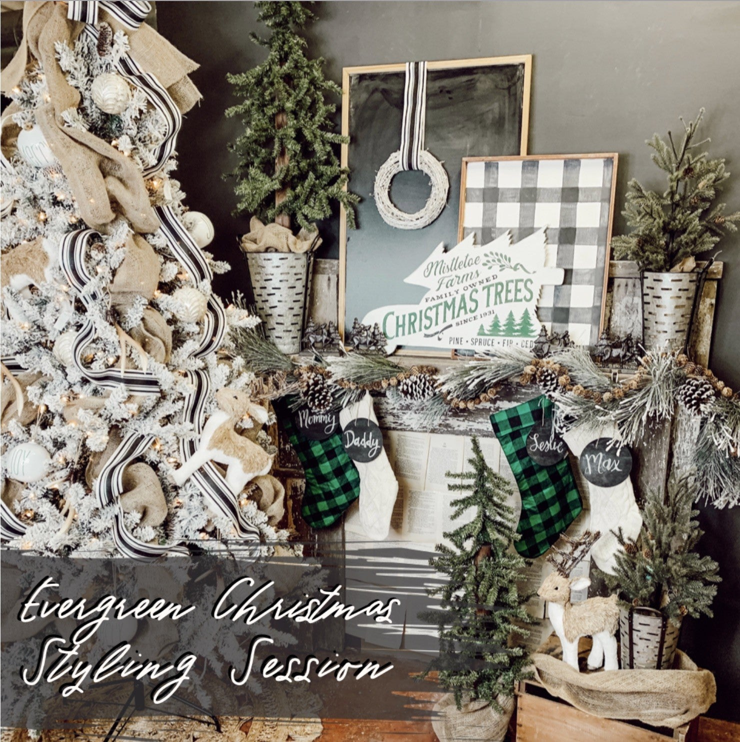 Evergreen Christmas Styling Session
