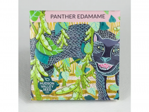 Panther Edamame Soybean
