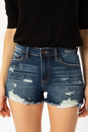 NATURE-DISTRESSED HIGH RISE SHORTS