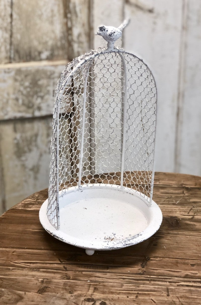 Rustic Wire Cloche'