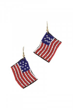USA Flag earrings