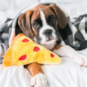 Slice Slice, Baby - Dog Toy