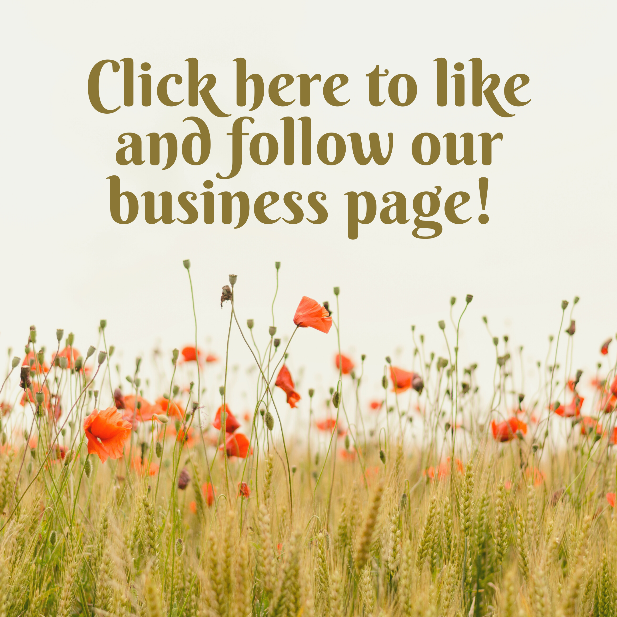 Click here for the Vine and Virtue Business Page!